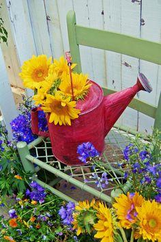 My Painted Garden: Painting Sunflowers and A little Green Chair Beautiful Flowers, Small Backyard Landscaping, Flower Farmer, Flowers, Flower Garden, Watering Can, Garden Design, Cottage Garden, Garden Art