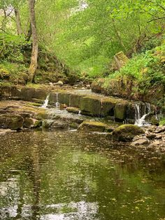 Barhaugh Burn trickling into the South Tyne here at Williamston Barns. Luxury Holiday Cottages, Holiday Accommodation, Luxury Holidays, Barns, Wilderness, Natural Beauty, England, River, Nature