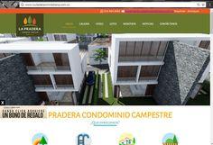 Creación, maquetación y Diseño de piezas gráficas para la página web.