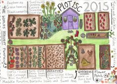 Last year was such a great year, it was my first full summer on my plot so it was a lot of trail and error, trying to find which varieties grew well in my soil and which vegetables tasted the best.…