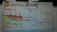 Science anchor chart for sedimentary rock and coal formation.
