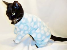 CoolCats  Aqua and White Polka Dot Fleece Pajamas for Cats