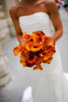 If you are looking for unique flowers to complete your bridal look, then look no further: this year, the calla lily wedding bouquet reached high levels of Cheap Wedding Flowers, Fall Wedding Bouquets, Autumn Wedding, Wedding Colors, Bridal Bouquets, White Bouquets, Bride Flowers, Bridesmaid Bouquet, Wedding Dresses