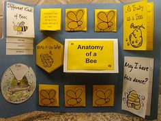 Keeping It Simple: Lapbooks! Great for homeschooling!