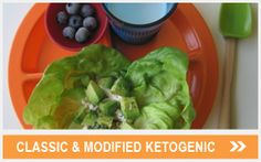 Classic Ketogenic and Modified Ketogenic - We used this diet for awhile.  May try it again in the future.
