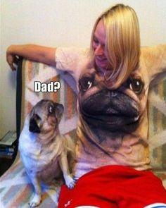 Dad? Pug problems.