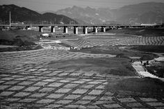 Berta upe Tilmantaite's extraordinary photographs of the Yongding River, (永定河) Beijing region.  In the early 1950s the river was dammed in the mountains northwest of Beijing by the Guanting Dam. In 2009, the municipal government launched an environmental project aimed at making Yongding River flow again, therefore construction work is taking place now. Beijing, North West, Flow, 1950s, Photographs, Sidewalk, Environment, Louvre, Construction