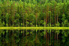 Photo by Petri Karvonen | Reflections on Tervalampi | Flickr - Photo Sharing!