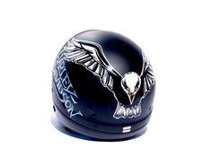 My new helmet, special painted