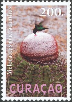 Blue-tailed Emerald stamps - mainly images - gallery format