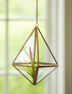 Hanging Prism Terrarium  MK THIS, OUT OF VASES OR XL JARS, TO HANG IN FRONT OF KITCHEN WINDOW (PERHAPS EVEN PLANT HOOK/HANGER OR CURTAIN HOLDBACK ABOVE LIVING RM WINDOW)