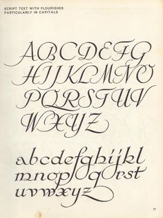 vintage script alphabet ~ Script Lettering M. Meijer ~ script text with flourishes, particularly in capitals Script Alphabet, Calligraphy Fonts Alphabet, Tattoo Lettering Fonts, Hand Lettering Alphabet, Lettering Styles, Handwriting Fonts, Typography Letters, Penmanship, Fancy Writing Alphabet