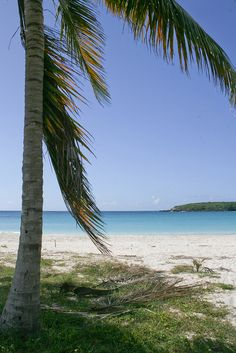 Media Luna Beach, Vieques, Puerto Rico...like a giant, beautiful, warm, turquoise, white sanded bathtub.