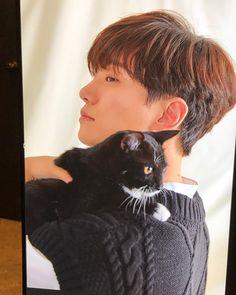 Korean Boy Bands, South Korean Boy Band, Beautiful Voice, Beautiful People, Men With Cats, Handsome Asian Men, Japanese Oni, Lee Junho, Lee Jong Suk