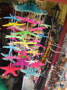 Wind chimes made from star fish. Seashell Crafts, Beach Crafts, Rain Chain Diy, Rain Chains, Diy Playground, Diy Wind Chimes, Mermaid Room, Fish Crafts, Crafts With Pictures