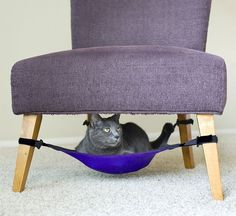 25 Awesome Furniture Ideas for the Cat Lover… the Mini Bedroom is Just Too Adorable