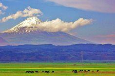 Ağrı Dağı DSC 1045 - Ağrı Dağı - Vikipedi-Küçük Ağrı Dağı,Doğubeyazıt Gürbulak yolundan görünüm
