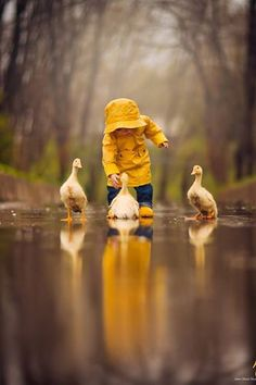 child w/ ducklings