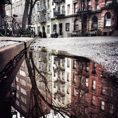 Pretty puddle in West Village.
