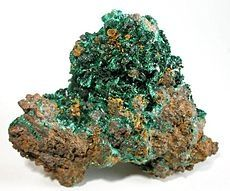 Green clusters of malachite crystals fill the vugs in a matrix of solid, hackly native copper. Size: 7.4 x 6.2 x 4.3 cm.