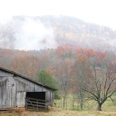 The South's Best Fall Color | Ellijay, GA | SouthernLiving.com