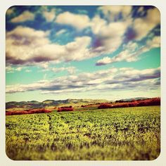 San Luis Obispo, CA Central California, Central Coast, San Luis Obispo, Oh The Places You'll Go, Coastal, Beautiful Places, Ocean, Spaces, Future