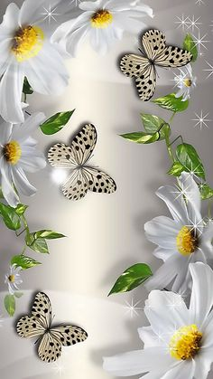 White Perfection in 2019 Wallpaper Nature Flowers, Beautiful Landscape Wallpaper, Flower Background Wallpaper, Flower Phone Wallpaper, Beautiful Flowers Wallpapers, Scenery Wallpaper, Heart Wallpaper, Butterfly Wallpaper, Pretty Wallpapers