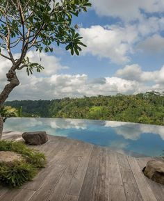 Best Resorts, Hotels And Resorts, Villas, Bali Retreat, Pool Fashion, Tropical Houses, Ubud, Luxury Real Estate, Land Scape