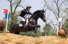Antioxidant Status in Three-Day Eventing Horses Studied
