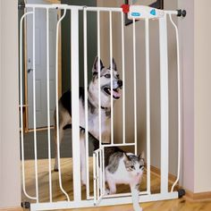244 Best Dog Gates And Ramps Images In 2016 Pets Dogs