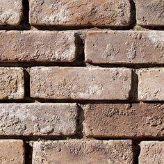 Coronado Stone Products 2.5-in x 8-in Special Use Eagle Buff Individual Piece Brick Veneer