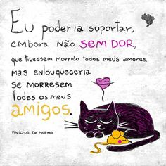 vinicius de moraes Ship Quotes, Word 3, Classic Songs, Special Words, Great Words, More Than Words, Friends Forever, I Love Cats, Make Me Happy