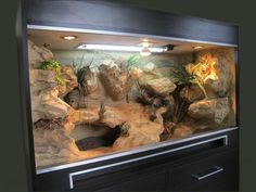 Terrarium back wall ideas – – - Reptiles Reptile Cage, Reptile Habitat, Reptile Room, Reptile Enclosure, Reptile Tanks, Reptile House, Bearded Dragon Vivarium, Bearded Dragon Enclosure, Bearded Dragon Terrarium