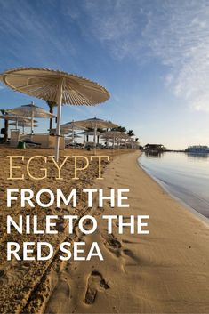 It may not sound like it from the news but now is the best time to go to Egypt. This video gives you a look into what it's like to spend a week cruising the Nile River, awing at Egyptian relics and temples of Luxor, and then chillaxing in Hurghada by t Egypt Travel, Africa Travel, Egypt Tourism, Cairo, Cool Places To Visit, Places To Go, Egypt Culture, Visit Egypt, Nile River