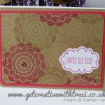 Traci Cornelius's Stampin Up Technique Class - April - One Sheet Wonder = 11 Cards!