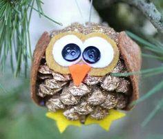 Owl Pine Cone