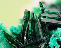 Atacamite Chili (photo JML)