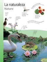 Nature (La naturaleza) themed vocabulary | Introduce Spanish vocabulary for plants and animals with these handouts. Get the printables from TeacherVision: https://www.teachervision.com/spanish-language/printable/70423.html