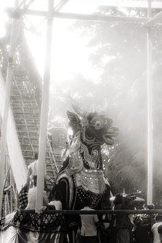 Cremation #Bali #rituals