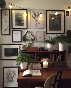 Botanical images and lots of frames
