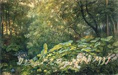 """""""Bajo las hojas de acedera: un sueño de tarde otoñal """"1878- Richard Doyle//  """"Exactamente igual que las hadas, los elfos desempeñan un papel en el equilibrio, salud y crecimiento de las plantas. Pero, sí los gnomos cuidan  las semillas subterránea, las hadas del brote de la planta fuera del suelo, los elfos cuidan  que les toque el sol y el mecanismo de fotosíntesis  De:  http://mitologiayleyendas.ning.com/group/elfosyhadasenlaliteraturayelarte/forum/topics/los-elfos-y-las-flores-plantas"""