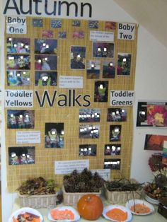 Bring displays to life with nature themed collections like this one on Autumn at Kidsunlimited Didsbury Autumn Crafts, Projects To Try, Photo Wall, Collections, Display, Holiday Decor, Nature, Life, Home Decor