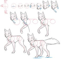 How to draw - Canines by Kimai on DeviantArt