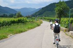 Bike Ride Through the Wachau Valley in Lower Austria. The Wachau wine region is along the Danube Bike Trail. #feelaustria