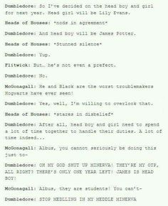 Dumbledore knows what he's shipping