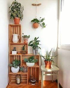 Bom dia! Ideia de cantinho verde com caixotes de madeira. Gostam?  #ideiasdiferentes #referencia
