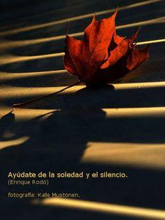 Ayúdate de la soledad y el silencio. (Enrique Rodó).