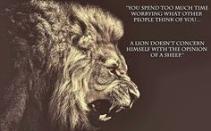 """``A lion doesn't concern himself with the opinion of a sheep."""""""