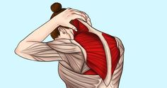 11 Stretches to Relieve Neck and Shoulder Tension A stiff neck and tight shoulde… 11 Stretches to Relieve Neck and Shoulder Tension A stiff neck and tight shoulders are very well known issues for. Neck And Shoulder Exercises, Back Pain Exercises, Neck Stretches, Shoulder Workout, Stretching Exercises, Shoulder Pain Relief, Neck And Shoulder Pain, Neck Pain, Tense Shoulders