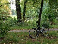 Otoño en bici